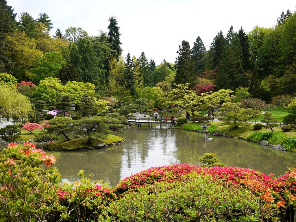 Seattle Japanese Garden   Seattle
