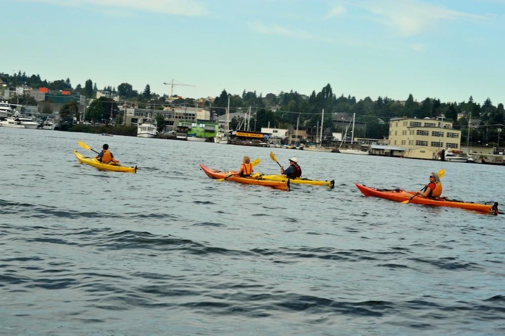 Lake Union Kayak Tour